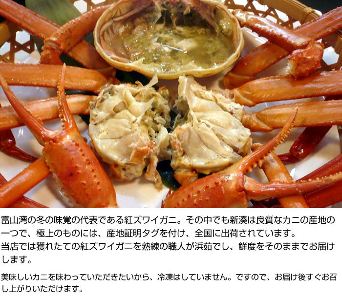 富山湾の冬の味覚の代表である紅ズワイガニ。その中でも新湊は良質なカニの産地の一つで、極上のものには、産地証明タグを付け、全国に出荷されています。
